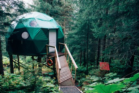 Vacanza nella casa sull\'albero - Magico Campeggio sull\'albero